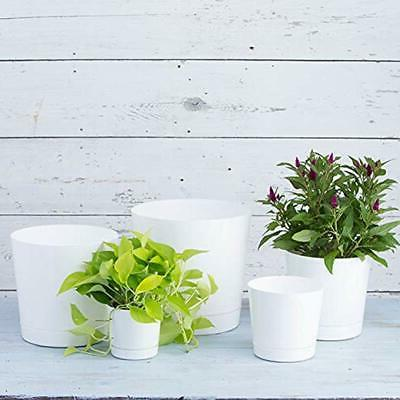 White Cylinder 10-Inch Flower Outdoor